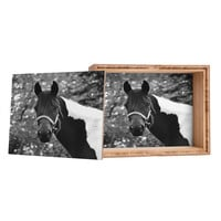 Allyson Johnson Horse Portrait Storage Box