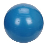 Sunny Health & Fitness Exercise Ball (Blue)