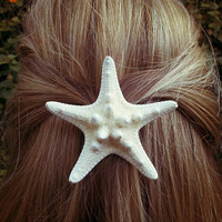 Knobby Sea Star Barrette