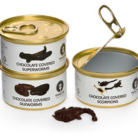 Chocolate-Covered Edible Bugs Gift Pack