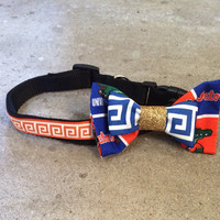 "Florida Gator Bow Collar: sized 14""-20"""
