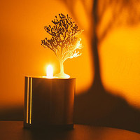 Art of Manliness Women's Holiday Shop 2013 | Lumen Flame (Magnolia)