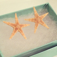 Aquamarine Flat Starfish Earring by byElizabethSwan on Etsy