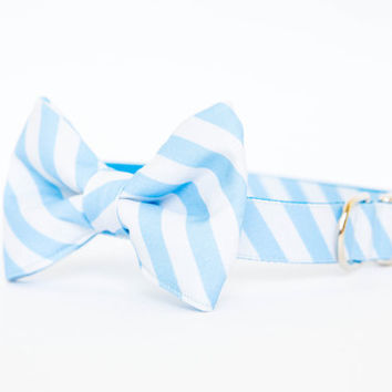 North Carolina Tar Heels Bow Tie Dog Collar
