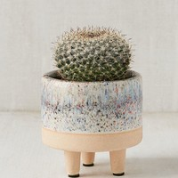 """Liv 3"""" Footed Planter 