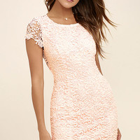 Hidden Talent Backless Blush Lace Dress
