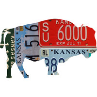 Kansas License Plate Bison