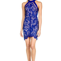 Combined Laced Bodycon Dress - Royal Blue