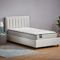 Sealy 12-Inch Encased Coil Innerspring Bed in a Box, Twin 12-Inch Mattress