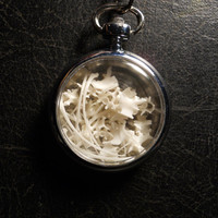 Out of Time Pocketwatch Ossuary with REAL Snake Bones Shadowbox Necklace