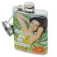 Anne Taintor - Warning Label Stainless Steel Flask