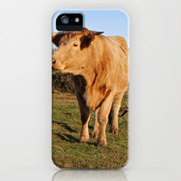 iPhone Cases by Sean Foreman   Society6