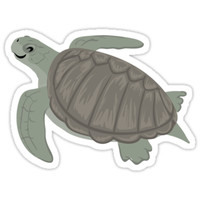 'Happy Olive Ridley Sea Turtle' Sticker by PepomintNarwhal