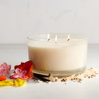 Cuban Vanilla Filled 3-Wick Candle