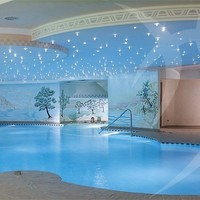 Indoor In-Ground Swimming pool Pools by Happy Sauna