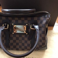 Louis Vuitton Damier Berkley Purse