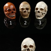 Skull Skulls Halloween Fall Human s personality home decorations ornament medical teaching aids resin craft  Halloween decoration props cranium Calavera