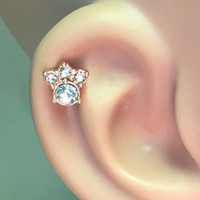 Animal Paw Print Rose Gold Cartilage Tragus Earring