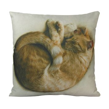 Cat |  Cat Sleeping Curled up | Cat Pillow | Cute Cat | Cat Gifts | Cat Decor | Cat Photo | Gifts for Cat Lovers | Throw Pillow Covers