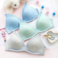 Girl's Bra With Steel Wire Bra Summer Underwear [10086429187]