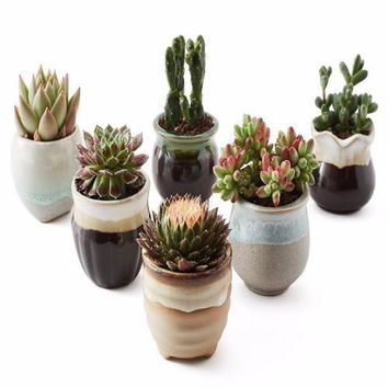 Six (6) Glazed Ceramic Succulent Planter SET