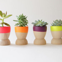 Mini Planters set of 4, Neon Pink, Orange, Purple and Yellow, wedding favors, Spring Decor, As seen in Country Living