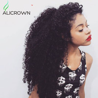 Top Kinky Curly Virgin Hair Wig Full Lace Human Hair Wigs Curly Lace Front Curly Human Hair Wig 10a Brazilian Front Lace Wigs