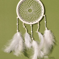 White Elegant Dreamcatcher with Coral beads and chips, wall hanging