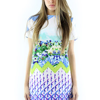 Glamorous Graduated Print Dress
