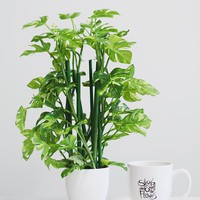 """Artificial Monstera Palm House Plant in Pot - 16.5"""" Tall"""