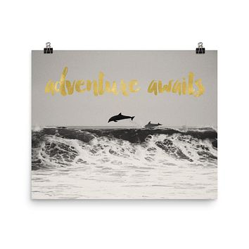 Dolphins Adventure Awaits Art Print