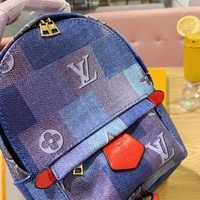 Louis Vuitton LV Mini Backpack