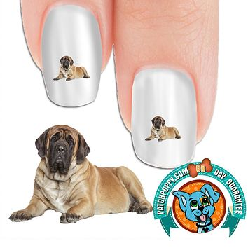 English Mastiff Serious Nail Art Decals (Now! 50% more FREE)