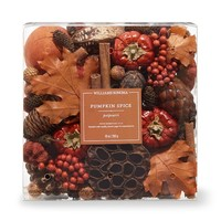 Williams Sonoma Pumpkin Spice Potpourri