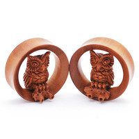 Owl on Saba Wood Plugs (20mm-50mm)