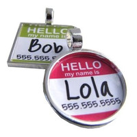 Hello My Name Is.. Silver Dog ID Tag