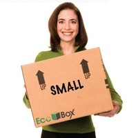 EcoBox 16 x 12 x 12 Inches, Genuine Small Moving Boxes, Pack of 15 (E-473-15)