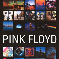 Pink Floyd Album Covers Poster 24x36