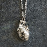 The Official I Love Science Store   Anatomical Heart Pendant