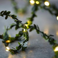 Battery Operate Copper LED fairy string Lights