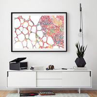 Thyroid gland histology watercolor print anatomy art histology poster of the human thyroid endocrine system medical art endocrinology print
