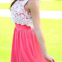 Hot Pink Lace Panel Sleeveless Skater Dress