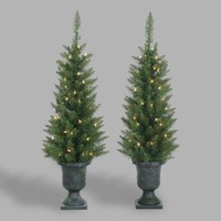 Potted Faux Norway Pine Trees Set of 2