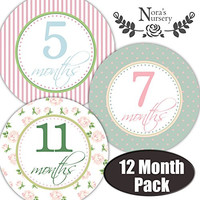 Featured Baby Monthly Stickers - Great Keepsake for Babies, Baby Girl Shower Gift Idea or Milestone Photo Prop - Easy to Peel, Stick, Shoot and Remove from Clothing and Onesuits - Shabby Chic Design