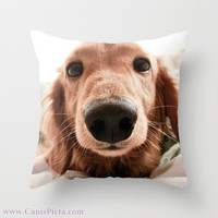 """Dachshund, Dog Photograph 16"""" x 16"""" Throw Pillow Cover - Photography, Doxie, Dach, Doxies, Weiner, Sausage, Whimsical, Puppy, Bright, Home"""