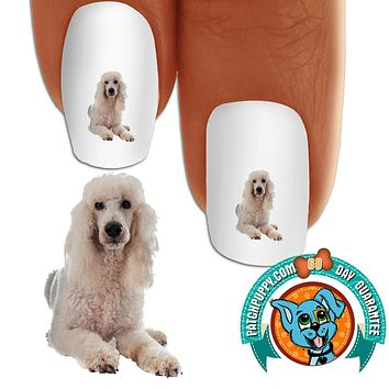 Standard Poodle White Laying Nail Art (NOW 50% MORE FREE)