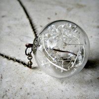 Glass Orb Dried Baby's Breath Terrarium Pendant