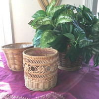 Collection of Small Planter Baskets, Set of 3 Round Wicker Baskets, Assorted Small Plant Basket