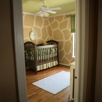 Interior/Exterior Decorating For My Dream Home / Complete giraffe print walls. Love it!