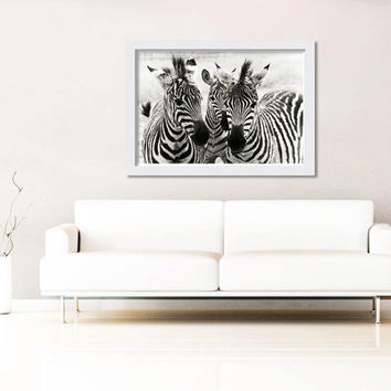 black and white photography zebra nature photography 8x10 8x12 fine art photography modern zebra stripes abstract photography neutral decor